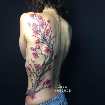 Sakura flowers - Caro Vespera