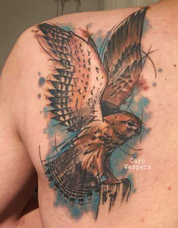 tatouage aquarelle watercolortattoo faucon - Caro Vespera